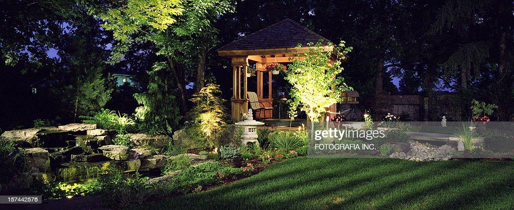 Garden at Night : Stockfoto