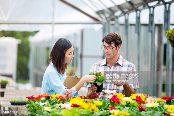 Garten-Center-Manager spricht mit Kunden über Gänseblümchen