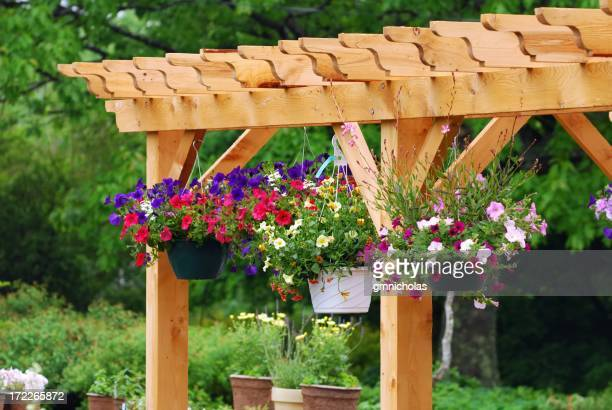 Garden center with wooden boards and flower pots