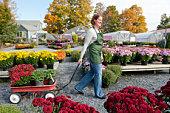 Garden Center Worker