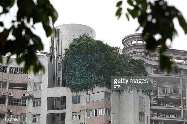 A garden covering three floors is seen on the rooftop of an apartment building in Guangzhou south China's Guangdong province in April 11 2014 China...