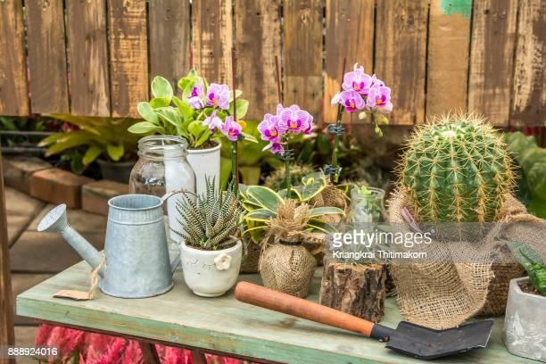 Garden decoration training course.