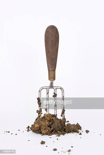 Garden fork standing in soil