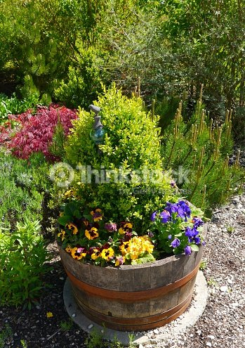 garten gartengestaltung sommer pflanzen blumen haus stock photo thinkstock. Black Bedroom Furniture Sets. Home Design Ideas
