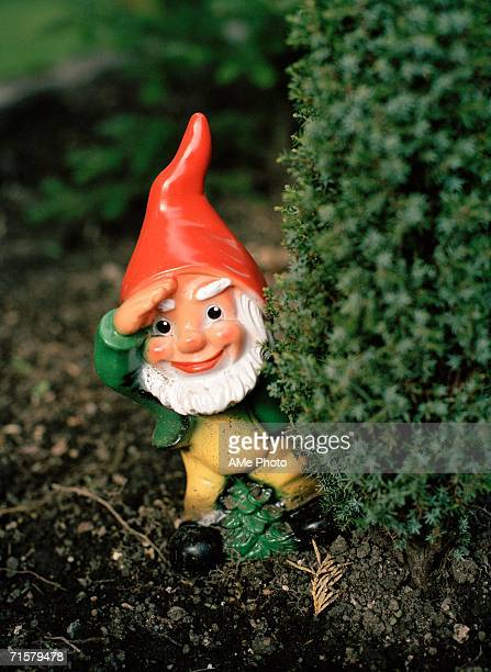 A garden gnome close-up.
