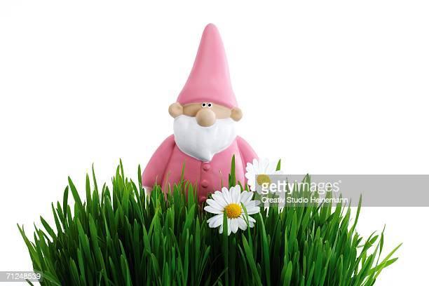 Garden gnome, grass in foreground