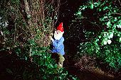 Garden gnome hiding behind bushes