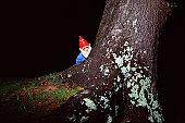 Garden gnome hiding behind tree
