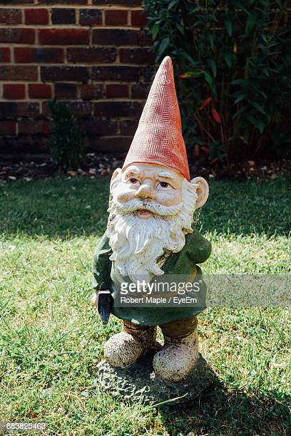 Garden Gnome In Back Yard On Sunny Day