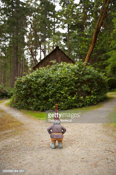 Garden gnome on garden path, rear view
