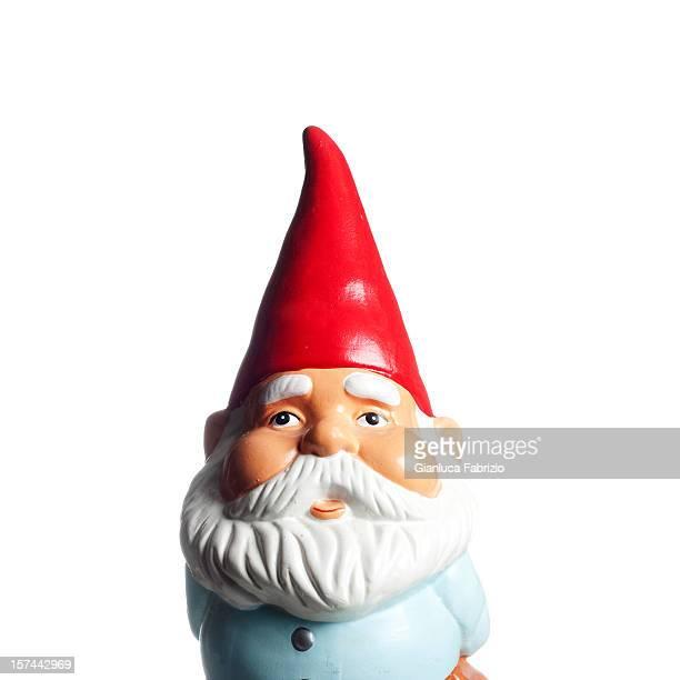 Garden Gnome Portrait