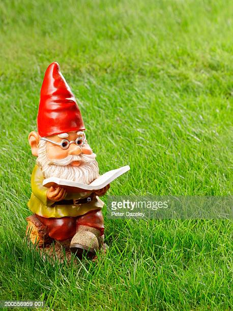 Garden gnome reading book on grass