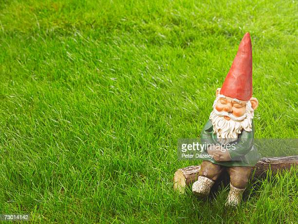 Garden gnome sitting on log, elevated view