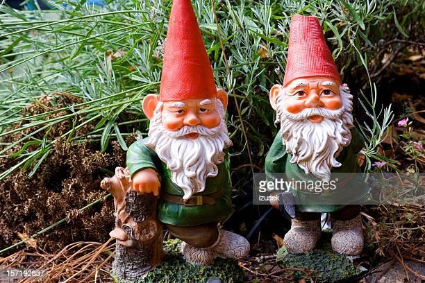 Jardim Gnomes