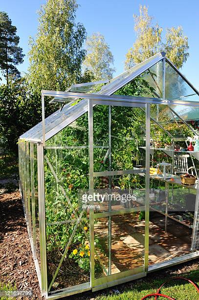 Garden greenhouse in September