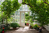 A green house full of flowers,  plants and trees.