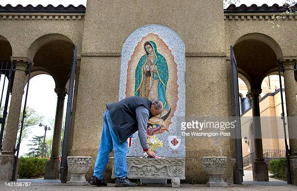 Garden guild member Joseph Bozik adorns the grounds with grotto with palm crosses in advance of Palm Sunday at the Franciscan Monastery of The Holy...