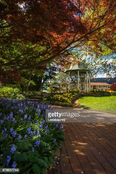 Garden in Bowral Australia