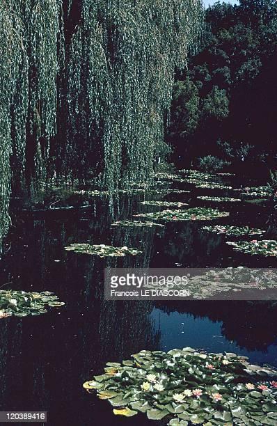 Garden In Giverny France Claude Monet's garden Seine and Oise department