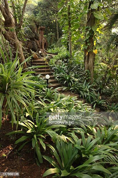 Garden in India.