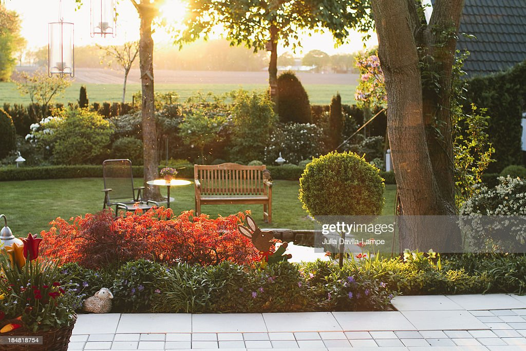 Garden in summer, at sunset