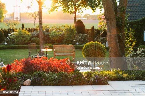 Garden in summer, at sunset