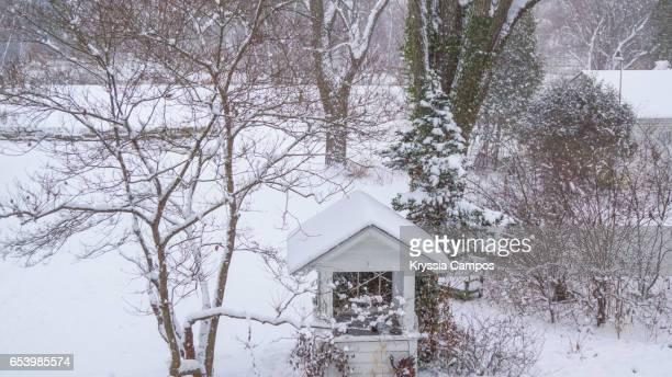 Garden in Winter landscape