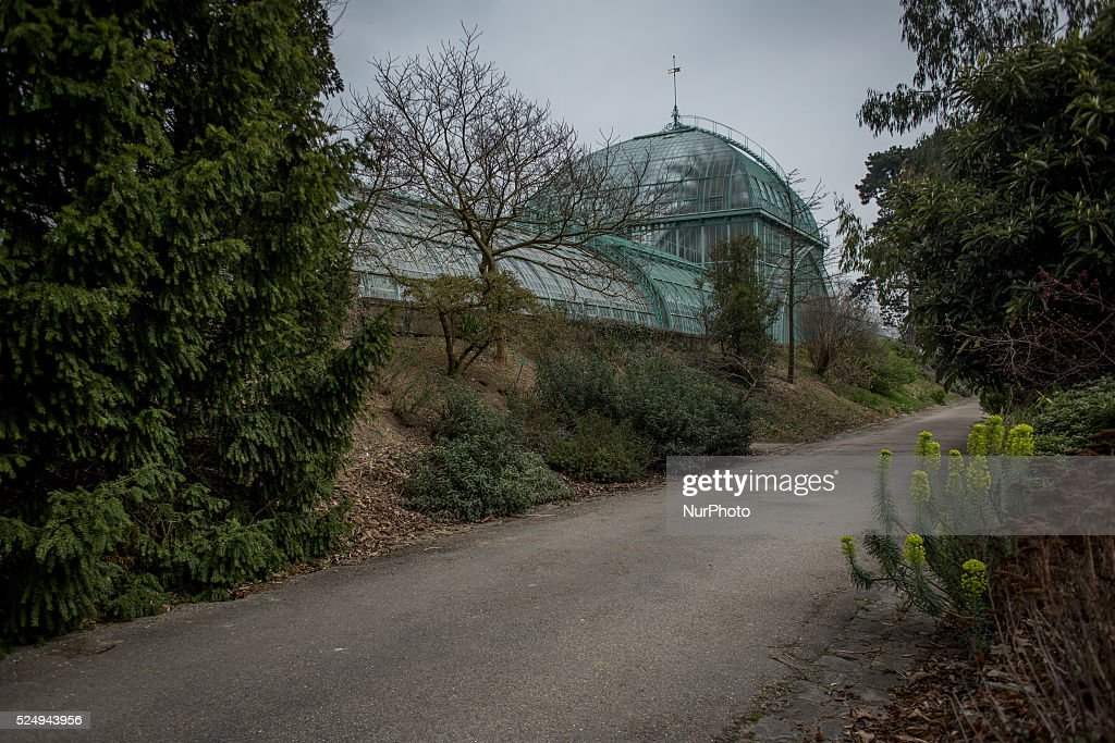 Segolene royal getty images - Serre de jardin 12m2 ...