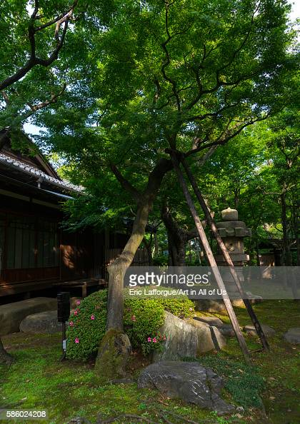Daikanyama stock photos and pictures getty images for Traditional japanese garden