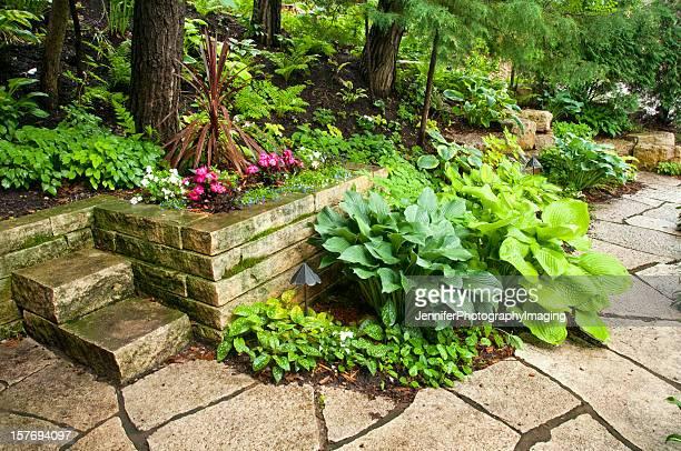 庭園の小道