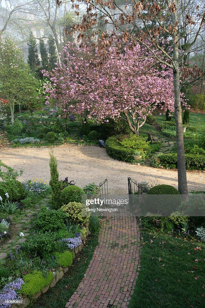 Garden : Stock Photo