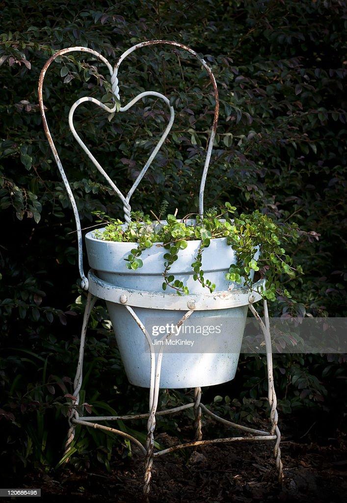 garden planter ideas