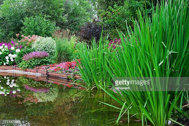 Garden Pond with Landscaping