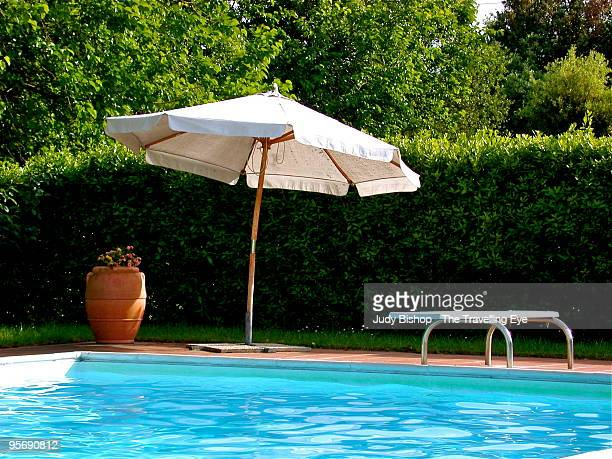 Garden pool with diving area shaded by parasol