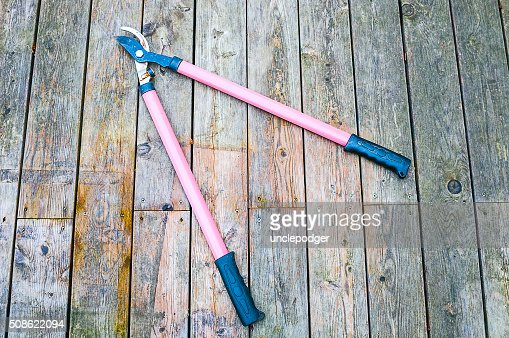 Garden scissors on wooden background : Stock Photo
