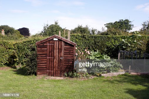 Garden shed in typical English back yard