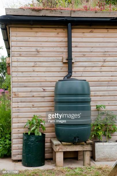 garden shed with soil roof and water butt to collect rainwater warwickshire