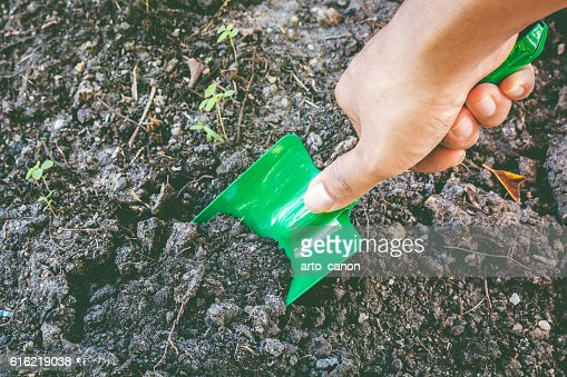 Garden Shovel and Dirt : Stock Photo