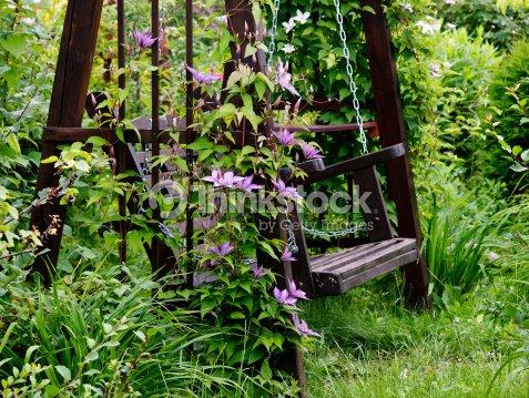 Garden swing. : Stock Photo