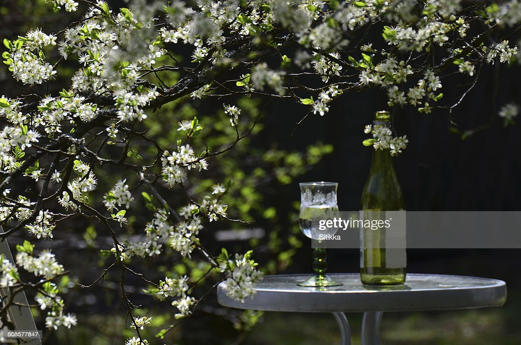 Garden table : Stockfoto