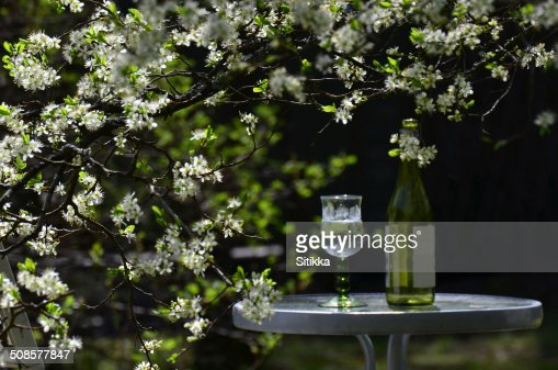 Giardino table : Foto stock