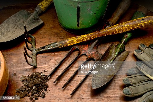 Garden tools on wood