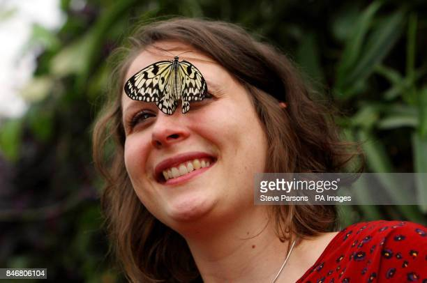 RHS Garden Wisley employee Samantha Bevington poses with a Tree Nymph butterfly in their Glasshouse at the gardens in Woking Surrey