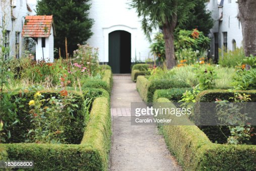 Garden with flower beds lined with box : Stock Photo