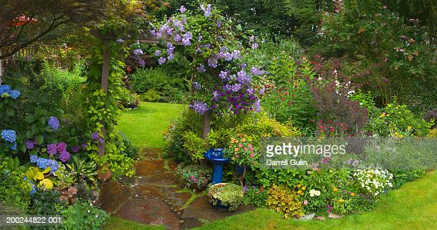 Garden with various flowers