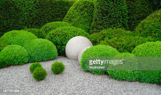 Gardendesign with buxus and yew