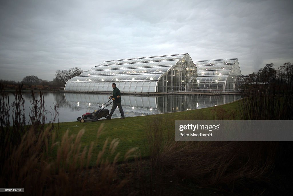 A gardener cuts the grass near The Glasshouse at RHS Wisley Gardens on January 11, 2013 near Woking, England. Rare and exotic butterflies have been placed in The Glasshouse for visitors from January 12 to February 24, 2013.