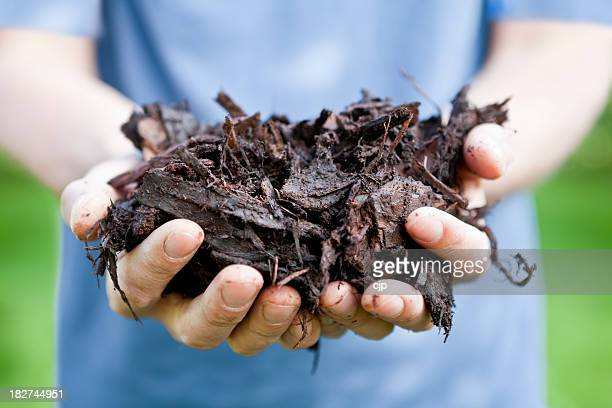 Gardener Holding Tree Bark Mulch