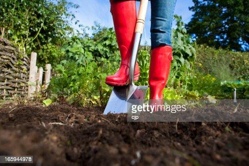 Gardener in red boots with spade in garden