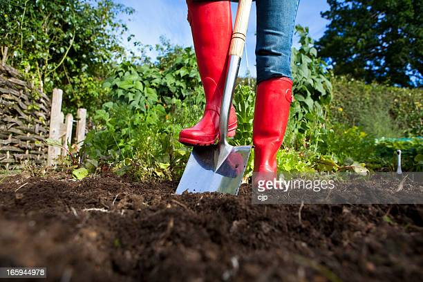 Gardener in red boots with spade in garden